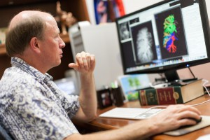 Walter O'Dell looks at a CT scan of an adult lung and its blood vessels. Conducting multiple CT scans over time can show a loss of the lung's vessels caused by radiation exposure. Comparisons can be made between traditional X-ray radiation and proton therapy to determine whether protons reduced the amount of lung damage. Photo courtesy of UF Health