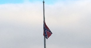 flag_tz