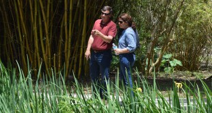 Wayne Smith, left, and Pam Taylor observe the waterfall and adjoining lake next to the bulb garden. (Alexandra Booth/WUFT News)