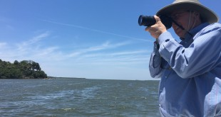 President Fuchs snaps a photo of a rosette spoonbill as it flies over Snake Island, a nesting ground for thousands of birds near Cedar Key (Nina Cusmano/WUFT News).