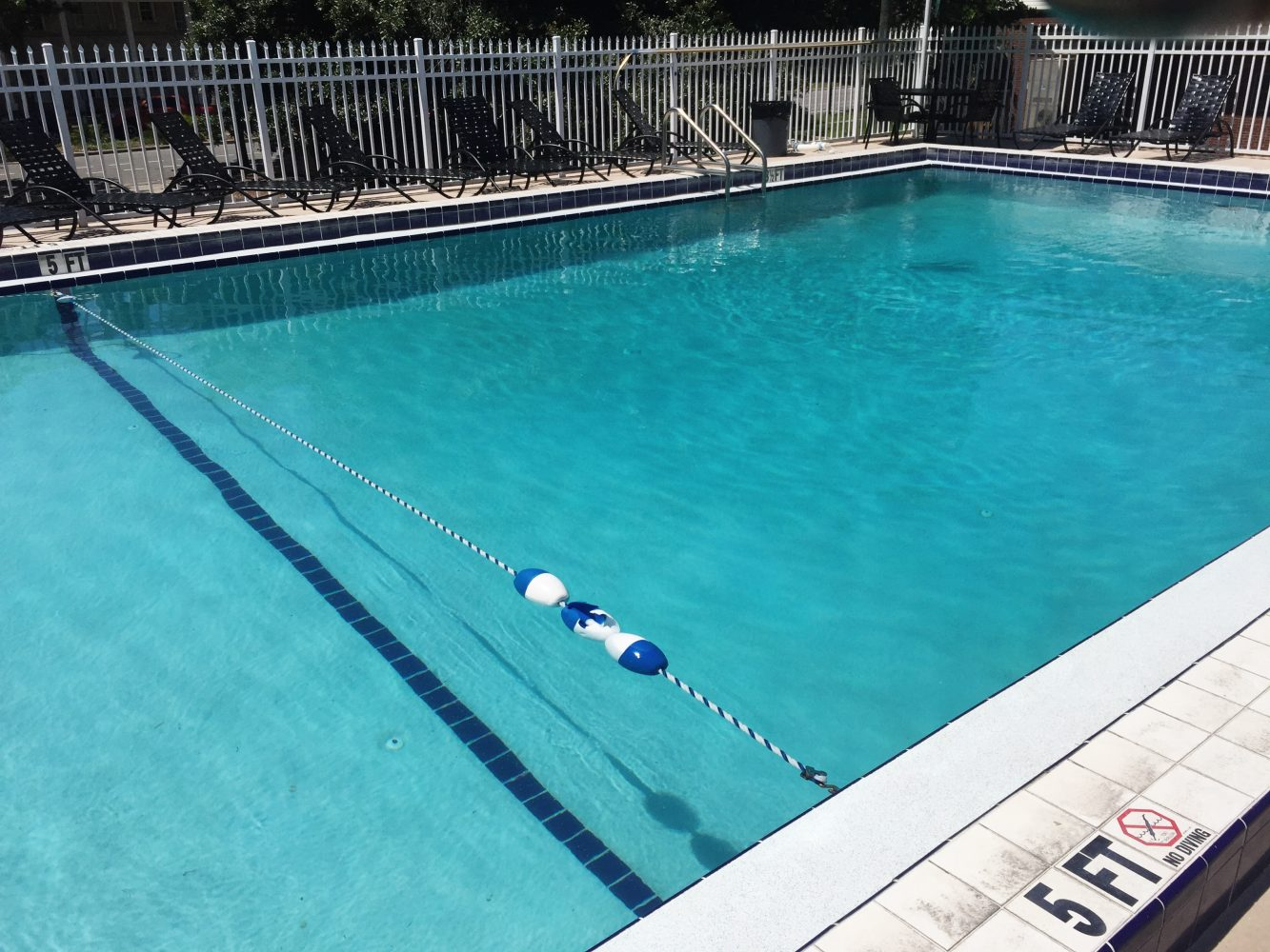 Cdc Warns Swimmers To Take Precautions Before Jumping In Wuft News