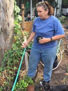 Nancy Hendler, 61 explains how much water it takes to sustain her garden. She relies on the various fruits and vegetables she plants in her garden. (Bria Wood/WUFT News)