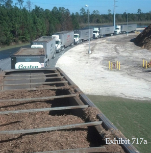 Trucks lined up to deliver Wood Resource Recovery's processed wood to the Gainesville Renewable Energy Center (GREC). (Photo courtesy of Wood Resource Recovery)