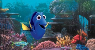 "FILE – This undated file image released by Disney shows the character Dory, voiced by Ellen DeGeneres, in a scene from ""Finding Dory."" In a statement Tuesday, July 19, 2016, researchers at the University of Florida Tropical Aquaculture Laboratory said they had successfully bred Pacific blue tangs in captivity for the first time. The blue species is the model for the forgetful fish featured in the films ""Finding Nemo"" and ""Finding Dory."" (Pixar/Disney via AP, File)"