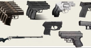 Nineteen guns (types shown) were reported missing to Gainesville police between May 1 and July 31. Five have since been recovered. (Graphic courtesy of Gainesville Police Department)
