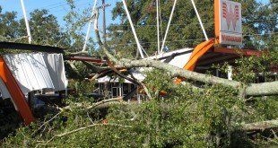 A large oak tree toppled over a Whataburger restaurant in Tallahassee, Fla., Sept. 2, 2016. Many businesses and homes in Tallahassee are without power and several roads are blocked due to tree damage caused by Hurricane Hermine.  (AP Photo/Brendan Farrington)