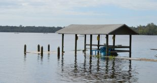 High levels of water from Hurricane Matthew flood a dock Monday in the St. Johns River. The hurricane resulted in 1,100-plus claims from Citizens Property Insurance policyholders as of Monday afternoon, and more claims are expected. (Cecilia Mazanec/WUFT News)