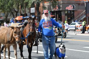 (From left to right) A mule, a horse, a man and a dog enjoy homecoming weekend. (Grace King/WUFT News)