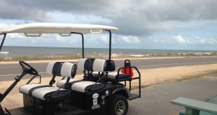 One of the golf carts used to transport customers to Turtle Shack Café because of road closures. Photo is courtesy of Turtle Shack Café.