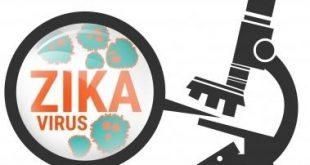 zika_crop