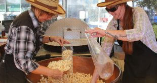 Kathy Dunham and Laura Theus scoop fresh kettle corn into bags. Dunham has been a regular at the festival for the past decade. (Photo by Kayla Ziadie)