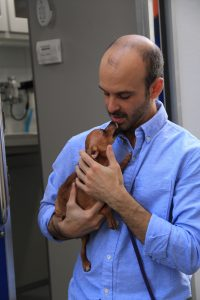 Clinical Associate Professor Brian DiGangi is enhancing the welfare of sheltered animals. He specializes in cleaning, disinfection and spay-neuter techniques for small animals while being a part of the Veterinary Community Outreach Program. (Mariana Riquezes/WUFT News)