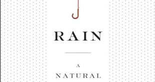 Rain, by author Cynthia Barnett