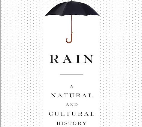 Rain, by author Cynthia Barnett