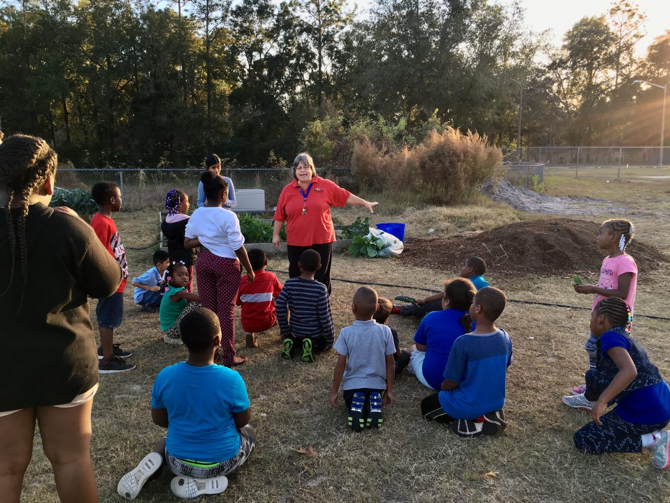 Students in Lake Forest Elementary School help harvest vegetables in the school garden as part of the Enriching Lake Forest afterschool program. Lake Forest Elementary School is a struggling school in Alachua County and community grants like the civic engagement grant from the Bob Graham Center for Public Service allow for programs like the school garden to exist.