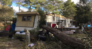 A tree split a home in half in the Lake City area. Photo courtesy of Columbia County Emergency Management.