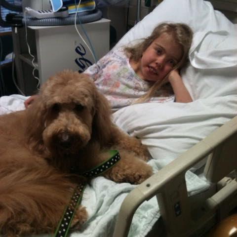 AnnaRose Van Sciver after receiving her heart transplant. (Photo courtesy of Cean Van Sciver)