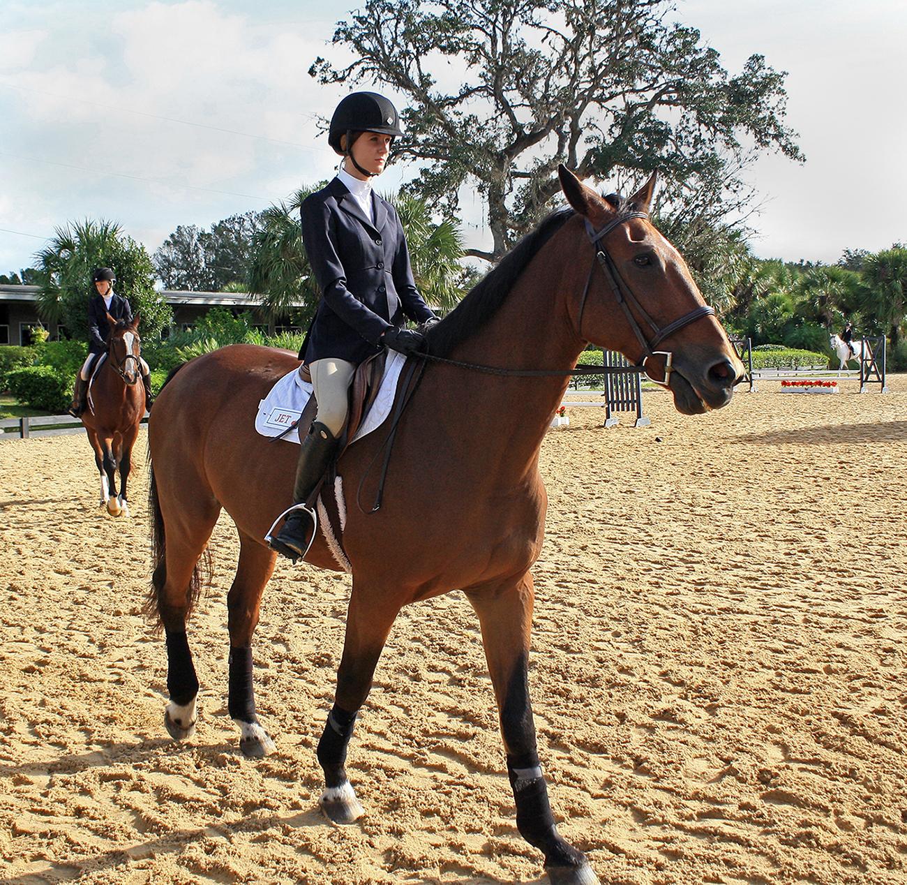 In Photos: UF Equestrian Team Starts Show Season - WUFT News