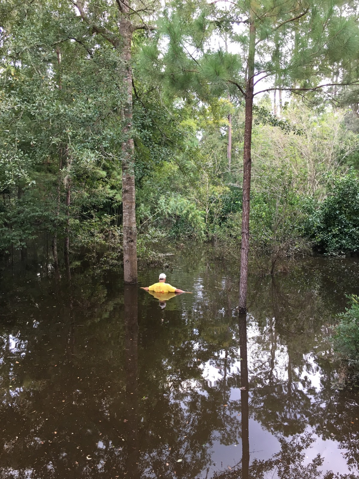 meadowbrook residents form committee to take action on flooding