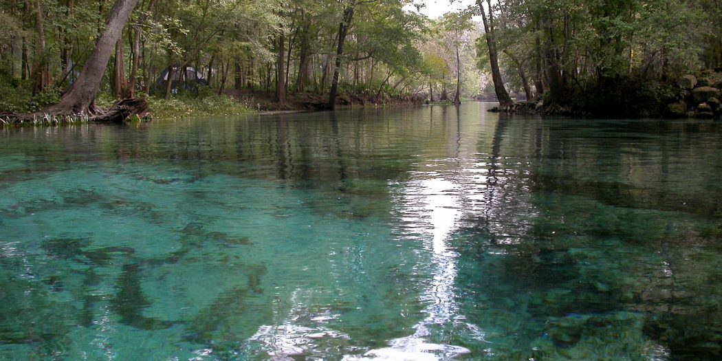 023 ginnie springs run In: OSFR Board Members Speak Out On Nestle WUFT | Our Santa Fe River, Inc. (OSFR) | Protecting the Santa Fe River in North Florida