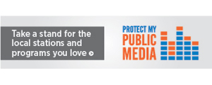 Protect My Public Media