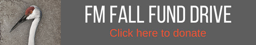 FM Fall Fund Drive - Click Here to Donate