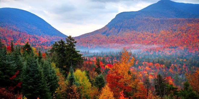Autumnwatch New England – Thursday at  8 p.m.